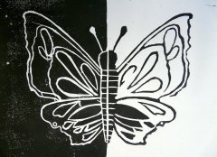 insekten03.jpg